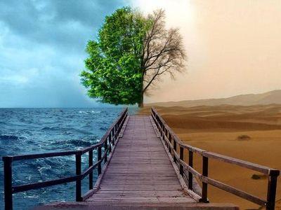 sentimentosdaalma.arteblog.com